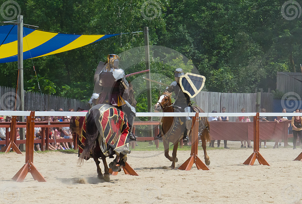 Stock Photo: Tilting Knights 4