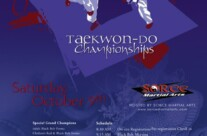 Design: 2010 Milwaukee Invitational Taekwon-Do Championships Designs