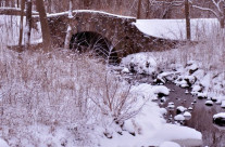 My Town: Snow Covered Bridge