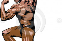 Stock Illustration: Bodybuilder